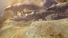 Dinos on Ice